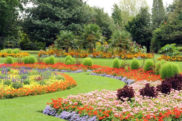 Gorgeous floral displays in Victoria Park