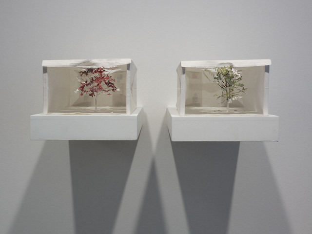 Yuken Teruya, New Work. Image courtesy of the artist and Pippy Houldsworth Gallery.