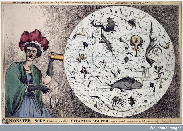 """L0006579 Engraving: 'Monster Soup..."""" by William Heath Credit: Wellcome Library, London. Wellcome Images images@wellcome.ac.uk http://wellcomeimages.org 'Monster Soup, commonly called Thames Water', Coloured engraving 1828 By: William HeathPublished: [1828?]  Copyrighted work available under Creative Commons by-nc 2.0 UK, see http://wellcomeimages.org/indexplus/page/Prices.html"""