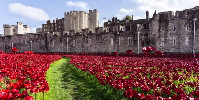 Tower of London Poppies Aerial Images Tower of London Poppies |