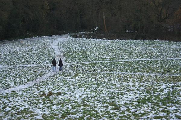 Snow on Hampstead Heath