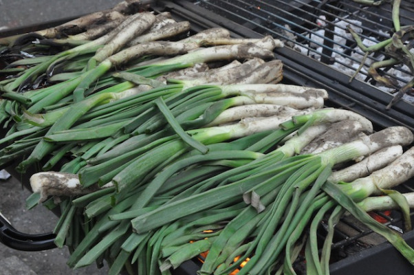 Calcots Image 1 supplied by Boqueria