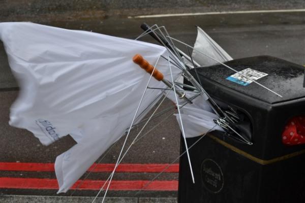 Umbrellas in a bin