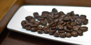 Feline Faeces Make Costly Coffee