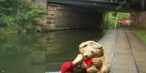 Leave No Bear Behind
