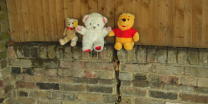 Leave No Bear Behind...Part 2