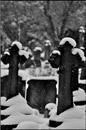 Wimbledon Visitors Use Graveyard As Car Park