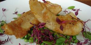 Shoot and Eat: Fish Hook