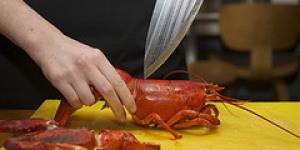 Lobsterfest Through June at Belgo