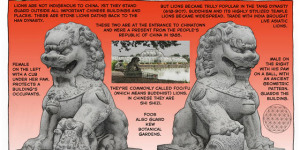 Lions of London #42