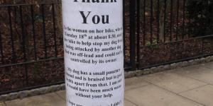 King's Cross: Dog Bites Dog Via Cyclist, As Told Through Notes