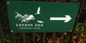 TONIGHT: Climate Change Talk @ ZSL Institute of Zoology