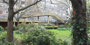 In Pictures: The Heygate Estate, SE17 - A Modern Secret Garden?