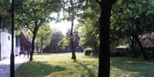 Nature-ist: Westway Garden, Ladbroke Grove