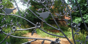 Nature-ist Revisits: Bellenden Road Nature Garden