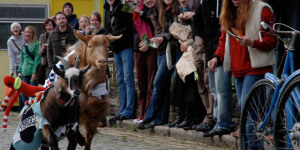 Preview: The Oxford And Cambridge Goat Race 2012