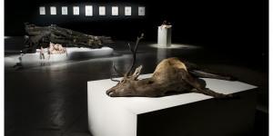 Art Review: Polly Morgan @ All Visual Arts