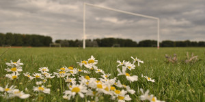 Wandsworth Council Approves Playing Fields Sale