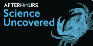 Week In Geek: 24-30 September 2012