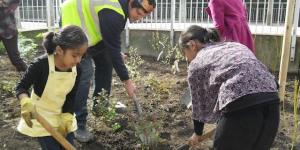 Help Plant Trees In Ruskin Park, Lambeth