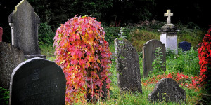 The Friday Photos: London Cemeteries