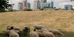Top 10 Things To Do In The Borough Of Tower Hamlets