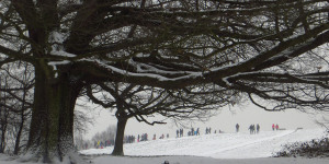 In Pictures: London Snow
