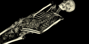 The Ancient Lives Of Eight Mummies At The British Museum