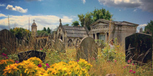 Five Things To Do In Cemeteries This Summer