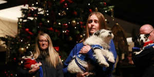 We Woof You A Merry Christmas -- Battersea Dogs Home Carol Concert Raises £17,000