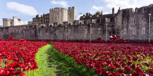 Video: Time-Lapse And Aerial Views Of The Tower Of London Poppies