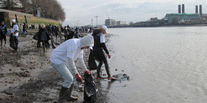 Thames River Watch Needs You For The Big Count 2015