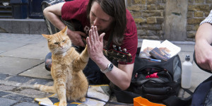 Pet Project: A Street Cat Named Bob To Launch A Cat Café In Covent Garden