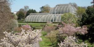 See Shaun The Sheep At Kew Gardens This Easter