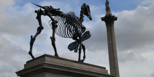 Skeletal Finance Horse Replaces Massive Blue Cock