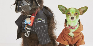 Star Paws: Dogs In Sci-Fi Cosplay
