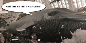 Herculean Labour #161: Scrub Down These Whales!