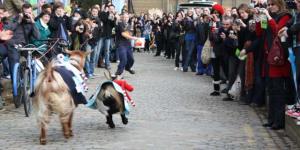 Preview: Oxford Vs Cambridge Goat Race 2011