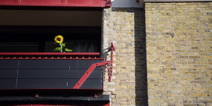 Residents Rally Round For Wapping Allotments