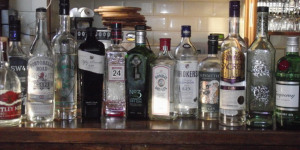 Find Your Favourite G&T: Join The London Gin Club