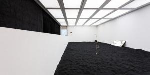 Experience Bizarre Black Beauty By Artist Lutz Bacher