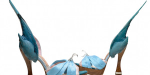 Could You Wear 28.5cm Heels? Shoes On Focus At The V&A