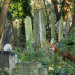 Life goes on in Tower Hamlets Cemetery Park