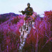 Richard Mosse, Higher Ground. Image courtesy the artist.