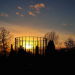 Sun setting over Kensal Green Cemetery, by Nick Richards
