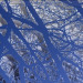 Caroline Jane Harris - Treescape Blue (Detail). Image courtesy Scream London