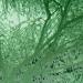 Caroline Jane Harris - Treescape (Green) Detail. Image courtesy Scream London