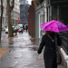 Walking around town with a purple umbrella, by Magic Pea