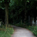 Tower Hamlets Cemetery Park - Image provided by Shuffle Festival.