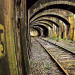 Connaught Tunnel (Newham): A chance to walk through this Victorian brick-arched tunnel beneath the Victoria Docks, before it's recalled to life for the Crossrail project. Prebook. Image by O.F.E. in the Londonist Flickr pool.